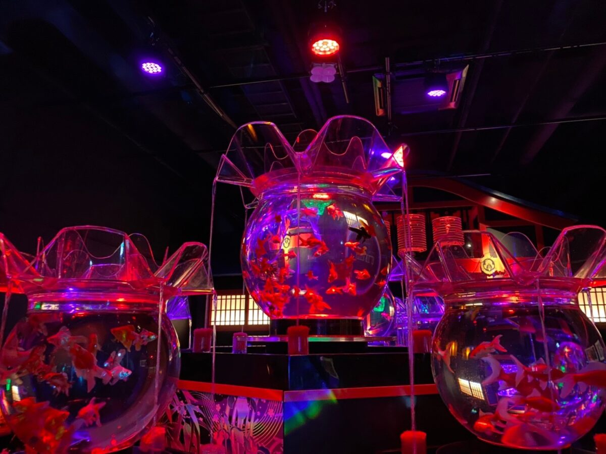 Nihonbashi Art Aquarium