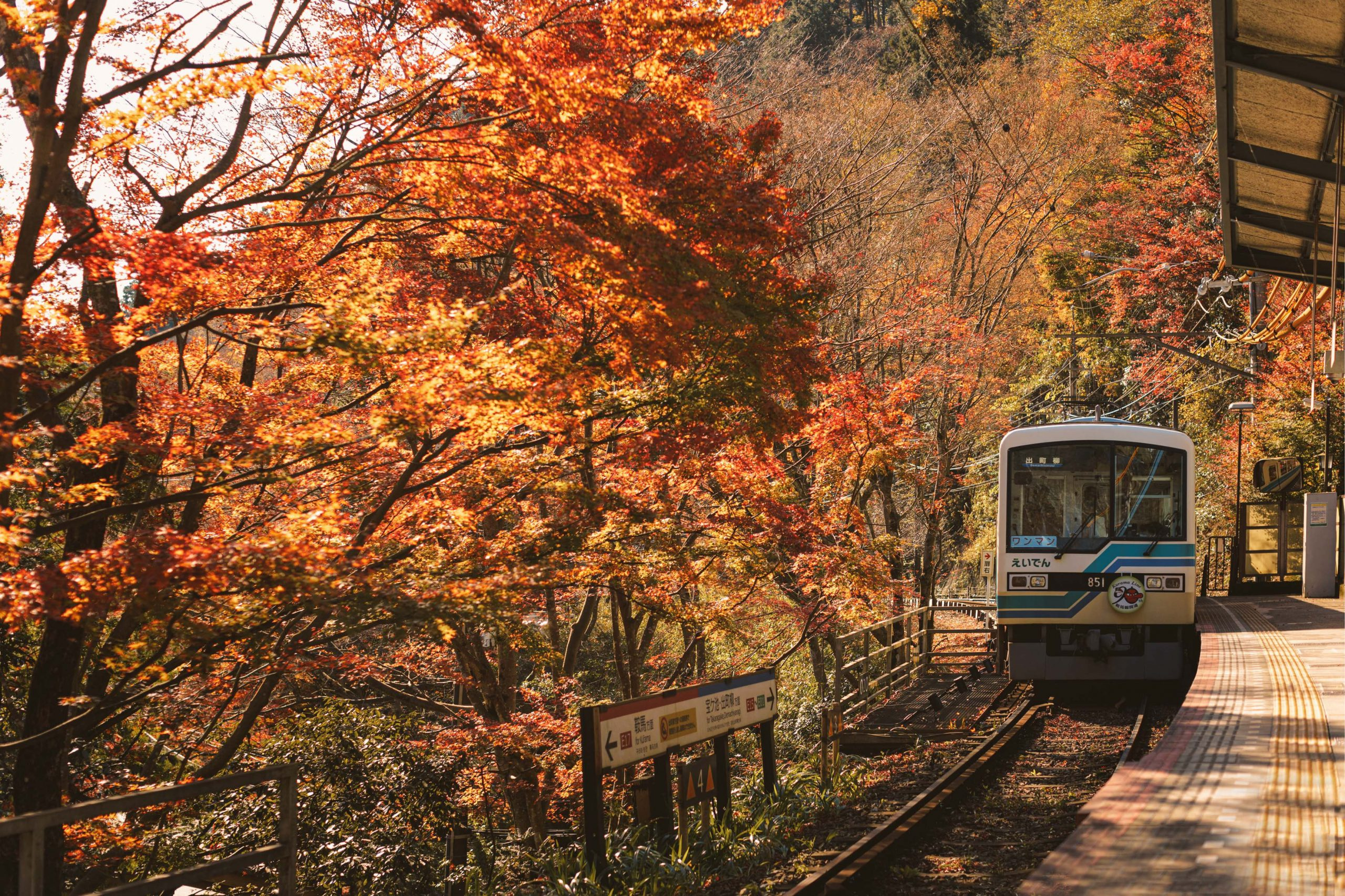 the best things to do in autumn