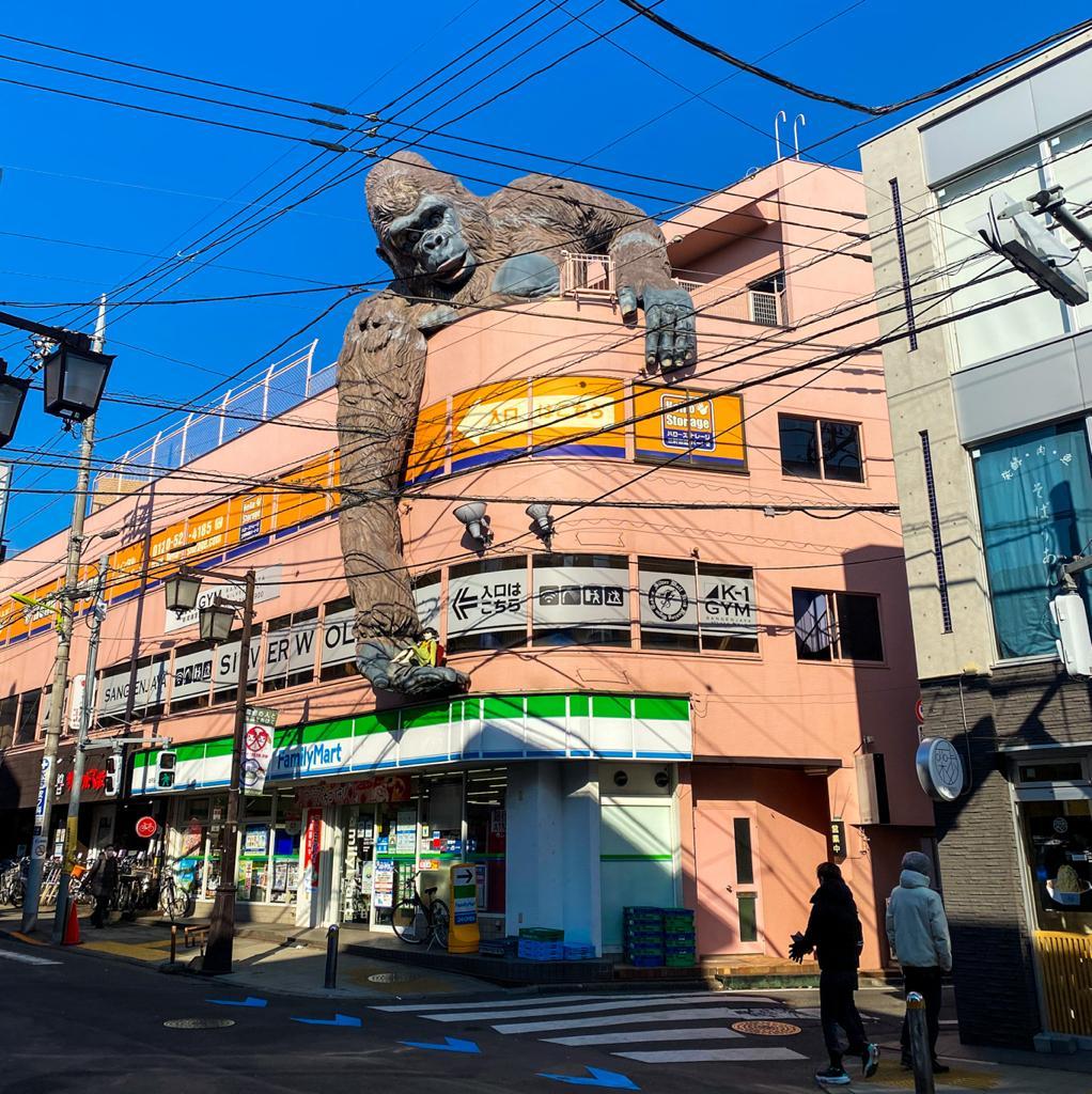 Gorilla building Setagaya