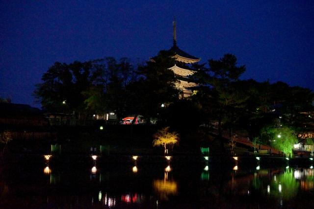 kofukuji light up