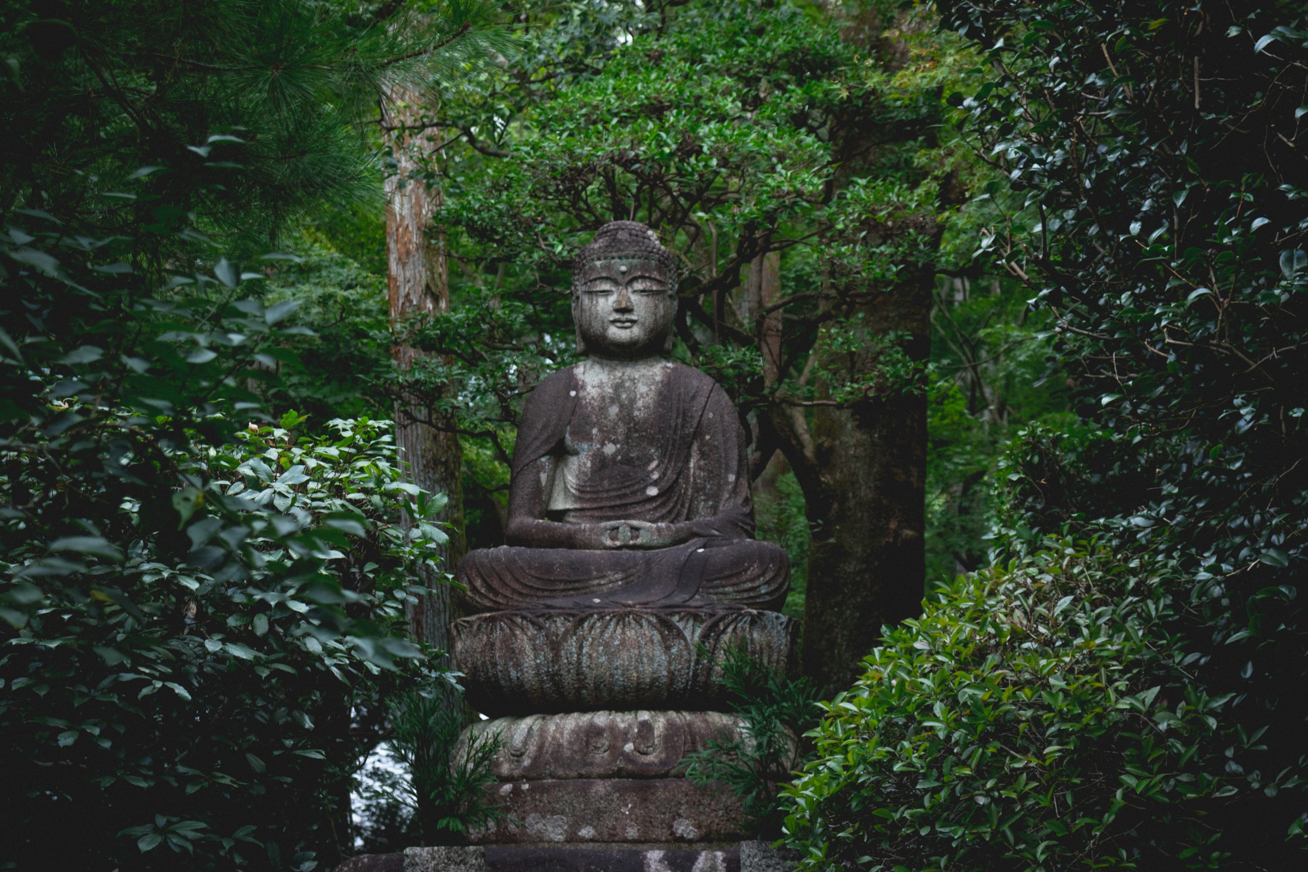 hidden statue in kyoto
