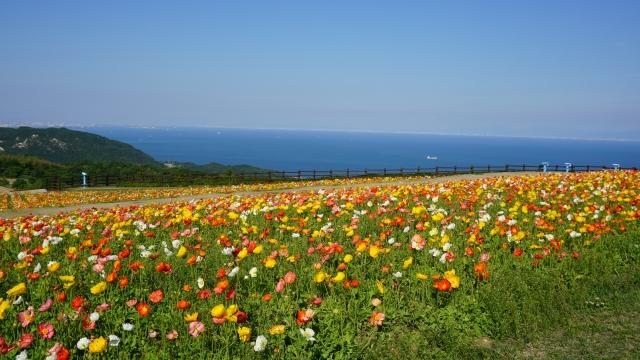 Awaji Hanasajiki Garden