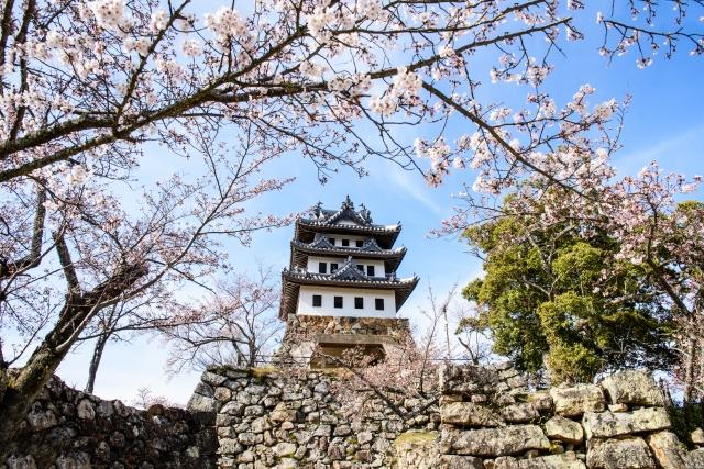 sumoto-castle