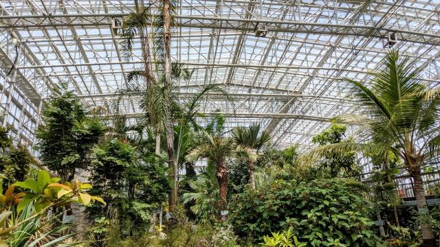 botanical garden image tokyo