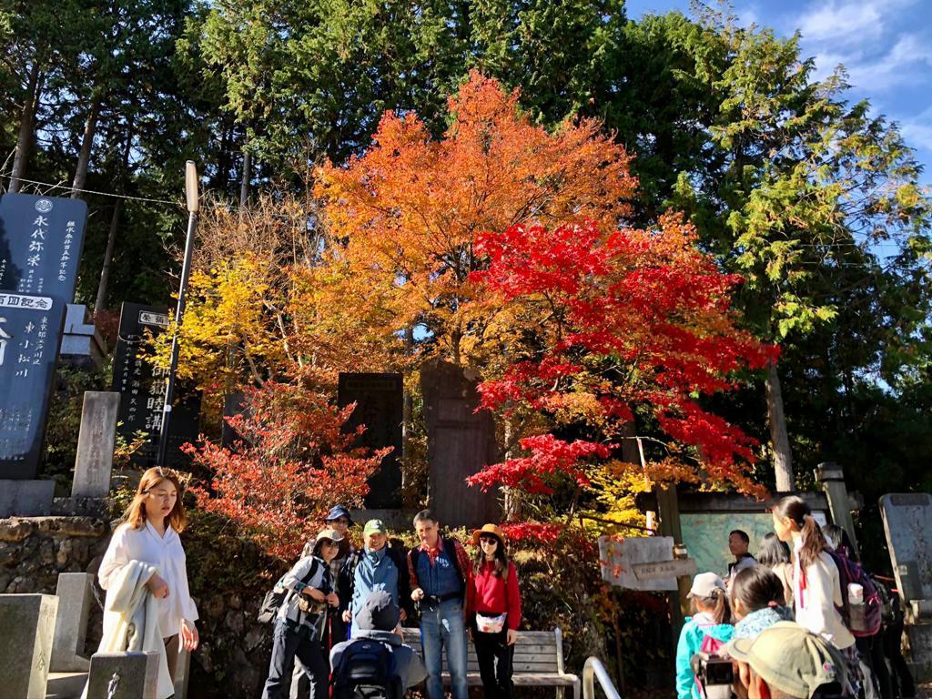 Autumn Mount Takao
